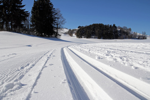magnificent snow while cross-country skiing in the allg?uの写真素材 [FYI00835599]