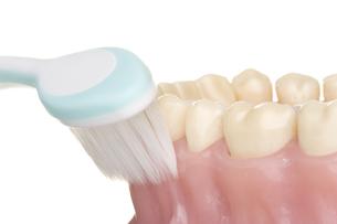 oral hygieneの写真素材 [FYI00835662]