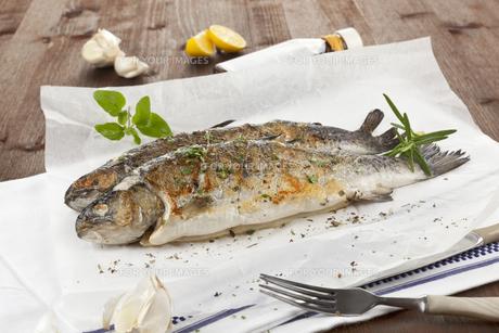 european_foodの素材 [FYI00835914]
