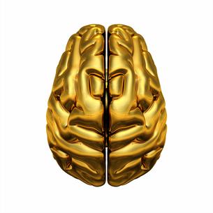 gold brain - top viewの写真素材 [FYI00835990]