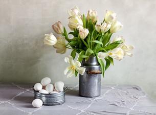 tulips and eggsの写真素材 [FYI00836002]