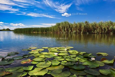 lakes_seasの素材 [FYI00836050]