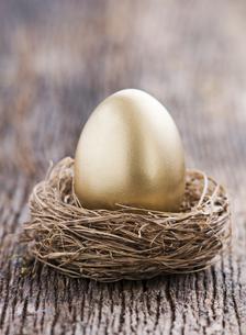 nestの素材 [FYI00836375]