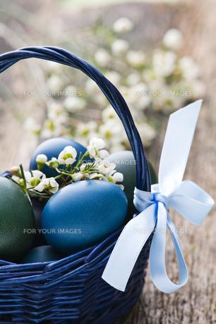 basketの写真素材 [FYI00836392]
