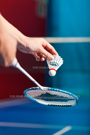 badminton in a gym - hand with ballの素材 [FYI00837538]