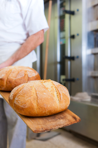 baker baking breadの写真素材 [FYI00837633]