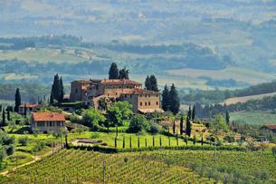 tuscany weingut - tuscany vineyard 04の素材 [FYI00837879]