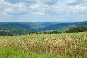 overlooking the moselle valleyの素材 [FYI00838937]