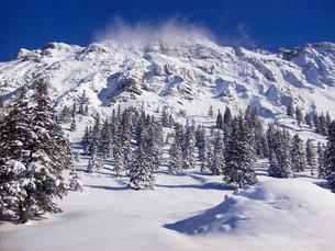 the iseler - a mountain in oberjoch in the allg?uの写真素材 [FYI00839483]