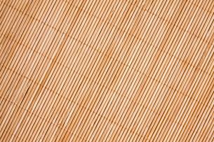 brownの写真素材 [FYI00840194]