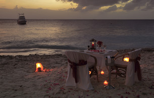 romantic dinner for twoの写真素材 [FYI00840359]