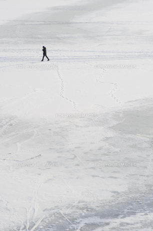 winterの写真素材 [FYI00840742]