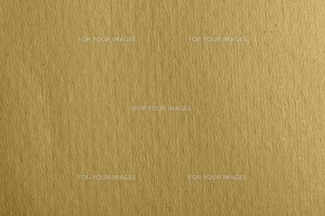 brownの写真素材 [FYI00840787]