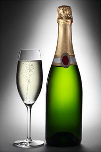 champagne 2の素材 [FYI00841956]