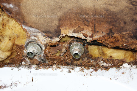 mold on defective water pipeの写真素材 [FYI00842187]