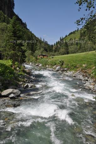 mountain streamの素材 [FYI00842237]