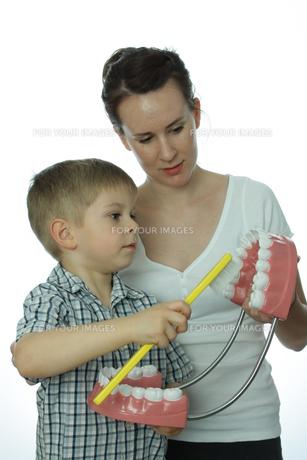 young 5 brushingの素材 [FYI00842566]