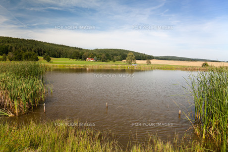 idyllic lake in th?ringenの写真素材 [FYI00842653]