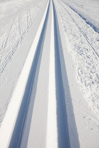 cross-country ski trails in winterの写真素材 [FYI00842945]