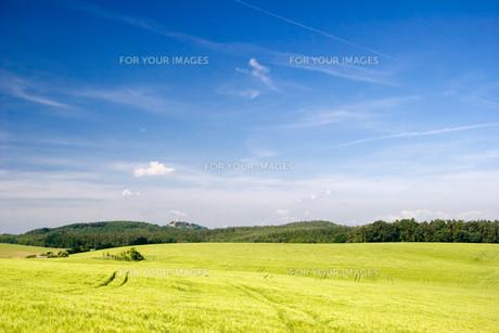 landscapesの素材 [FYI00843335]