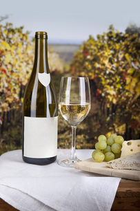 wine and cheeseの写真素材 [FYI00843338]