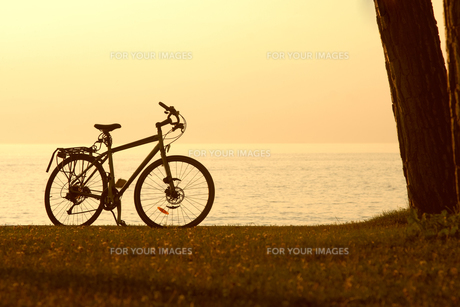 wheel_sportsの写真素材 [FYI00843354]