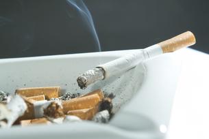 cigaretteの写真素材 [FYI00843698]