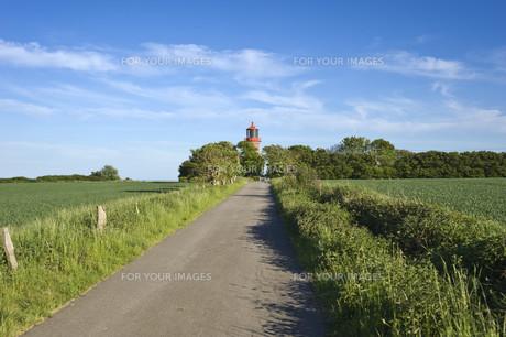 lighthouse staberhuk,insel fehmarnの素材 [FYI00843755]