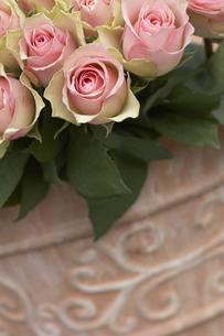 rosesの写真素材 [FYI00843898]