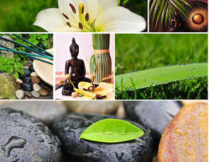 wellness collage spa voucherの写真素材 [FYI00844740]