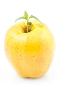 fruits_vegetablesの写真素材 [FYI00845399]