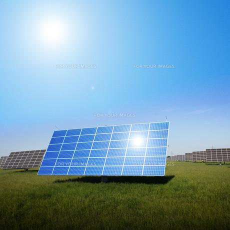 solar panelsの写真素材 [FYI00846002]