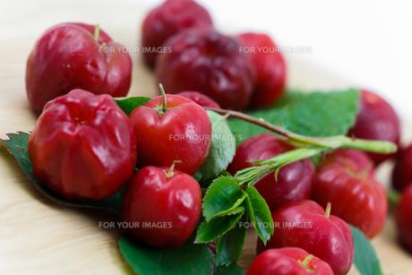 acerola cherry - brazilの素材 [FYI00846875]