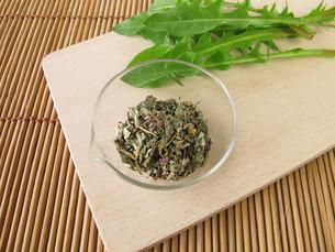 dandelion root and dandelion,taraxaci radix cum herbaの写真素材 [FYI00847158]