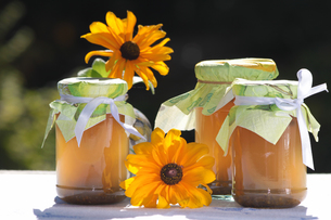 homemade jellies with flowersの写真素材 [FYI00847228]