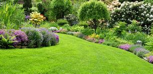 beautiful garden in the springの写真素材 [FYI00847395]