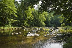 murg river,forbachの写真素材 [FYI00848059]