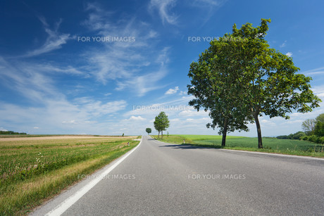 road landscapeの素材 [FYI00848300]