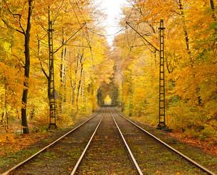 railwayの写真素材 [FYI00851276]