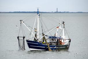 fish trawlers norderneyの写真素材 [FYI00852889]