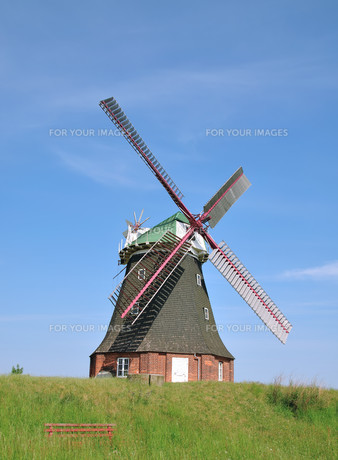 the famous windmill of stove on salzhaff in mecklenburgの写真素材 [FYI00853675]