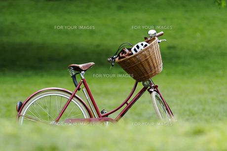 wheel_sportsの写真素材 [FYI00854896]