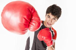 boxerの写真素材 [FYI00855024]