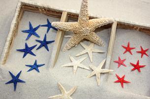 starfish colorsの写真素材 [FYI00856273]