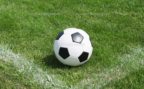 ball_sportsの素材 [FYI00856919]
