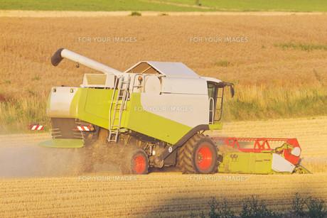 combine harvester harvestingの素材 [FYI00857097]
