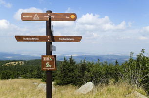 signposts in the harz national park (germany)の写真素材 [FYI00857242]