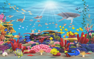 fishes_crustaceansの写真素材 [FYI00857706]
