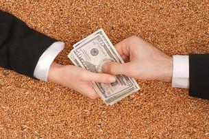 money_financesの素材 [FYI00860249]