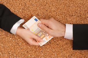 money_financesの素材 [FYI00860569]